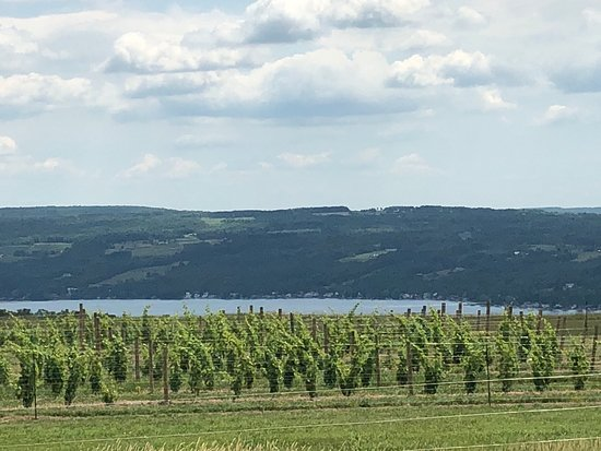 Hammondsport, Estado de Nueva York: Azure Hill Winery is located on the Weat side of Keuka Lake,  NY