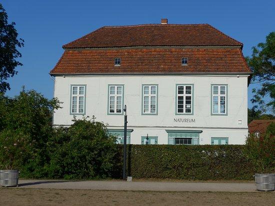 Natureum - Das erste Naturmuseum Mecklenburgs