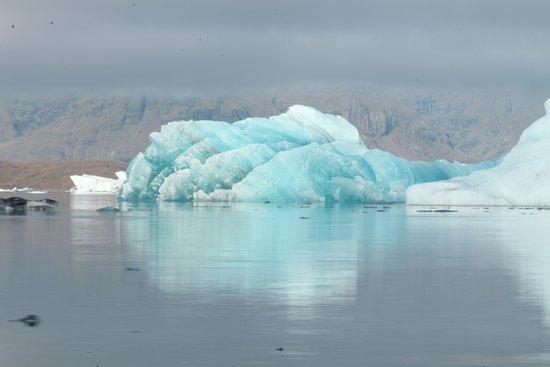 Jokulsarlon Lagoon: drijvende ijsbergen