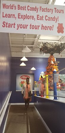 20180909_161727_large.jpg - Picture of Albanese Candy Factory, Merrillville  - Tripadvisor