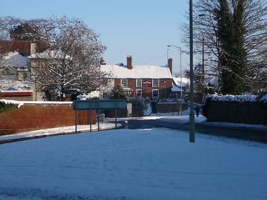 Powick in the snow