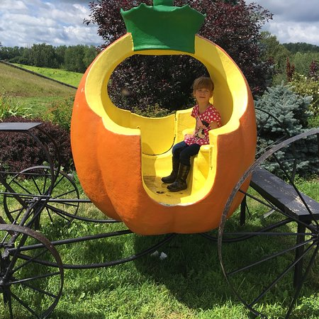 Hugli's Blueberry Ranch & Country Gift Store: Great day at Hugli's Berry Farm