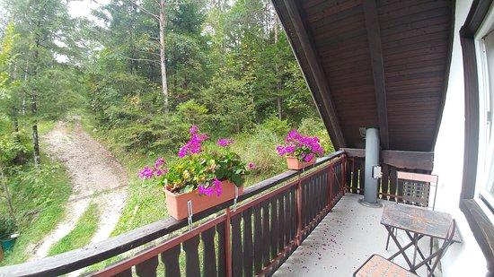 Begunje na Gorenjskem, سلوفينيا: вид с балкона