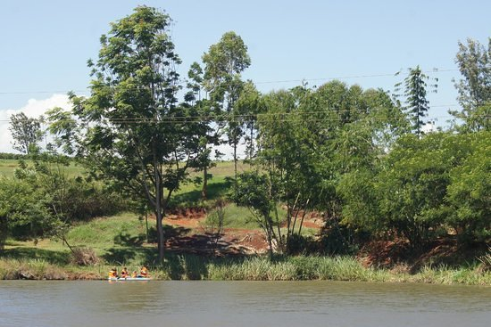 Kiambu, Kenya: Evergreen park from the lakeside view