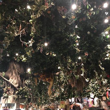 Rainforest Cafe 사진