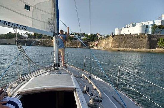Sunset Sailing Trips