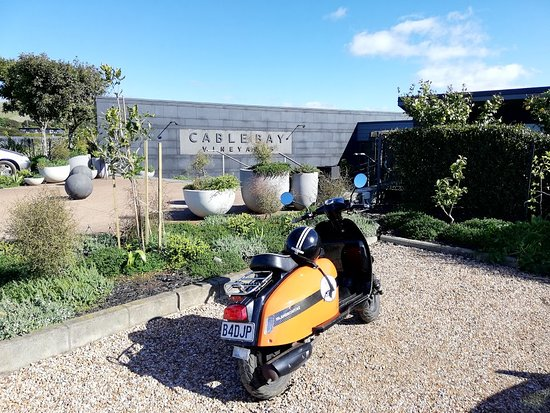 Island Scoot: Nice ride to nearby vineyards