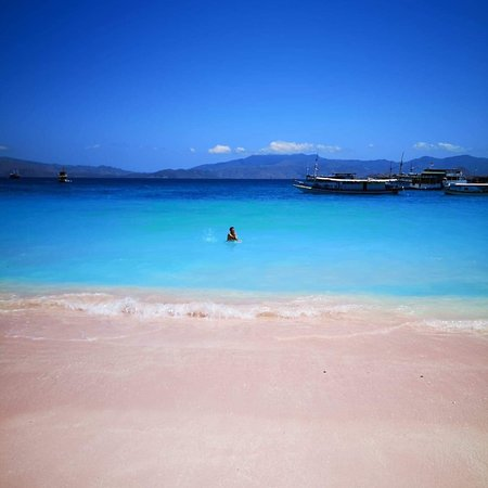Pulau Komodo, Indonesia: photo0.jpg