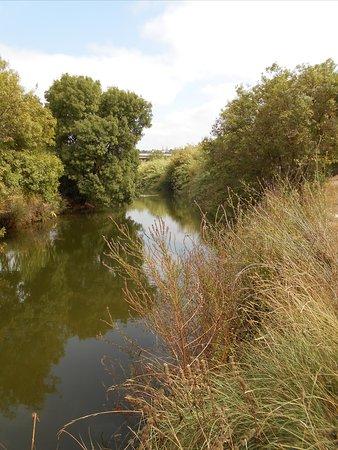 Ponte Medieval de Paderne: La rivière