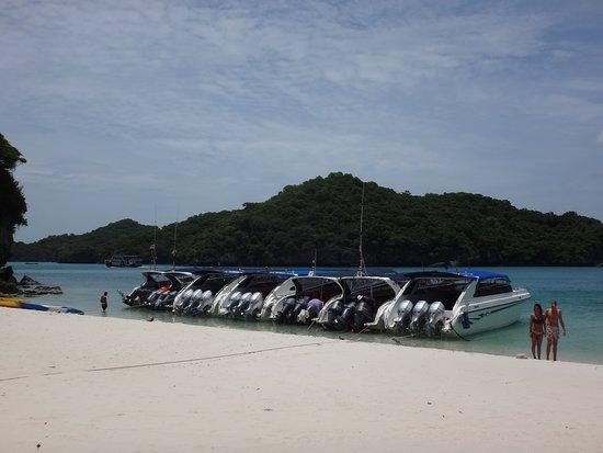Mu Ko Ang Thong National Park: ボートたち。