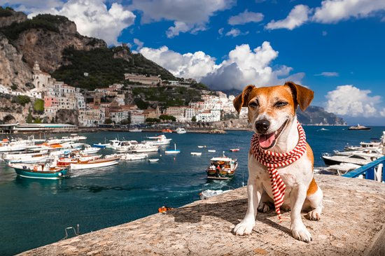 Raphael Tours on the Amalfi Coast