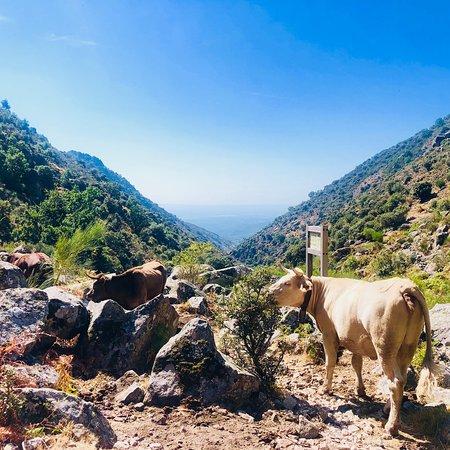 Jaraiz de la Vera, Espanha: photo4.jpg