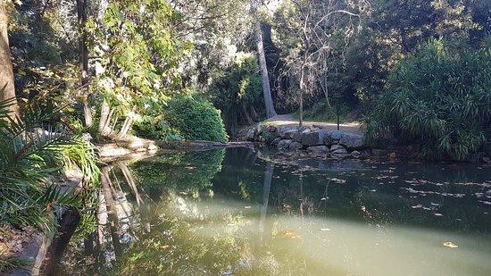 Burnside, Αυστραλία: 20180429_152757_large.jpg
