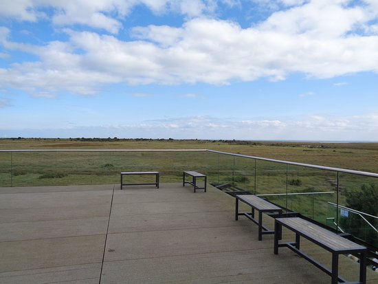 Gibraltar Point National Nature Reserve: The scene from the roof terrrace