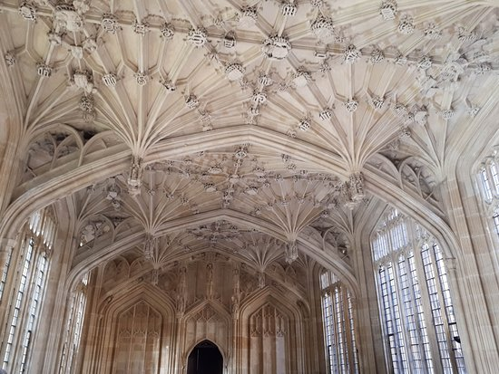 Bodleian Library: Divinity School, the fan vaulted ceiling