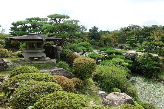 Morishi's Garden
