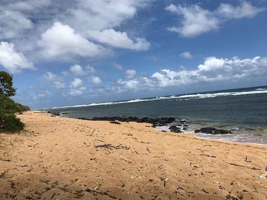 Kilauea, Hawaje: looking to the west from the beach