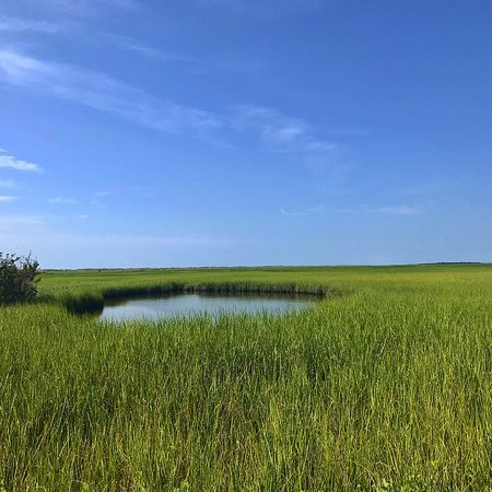 Kure Beach, Carolina del Norte: Basin Trail