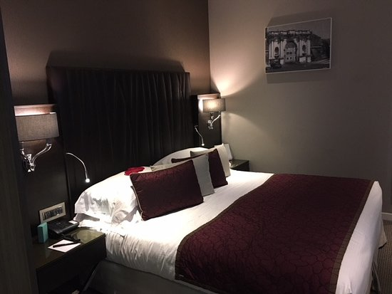 Double for Single (Comfort Room)