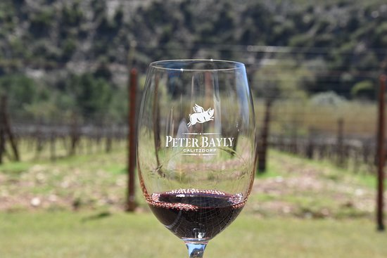 Peter Bayly Wines