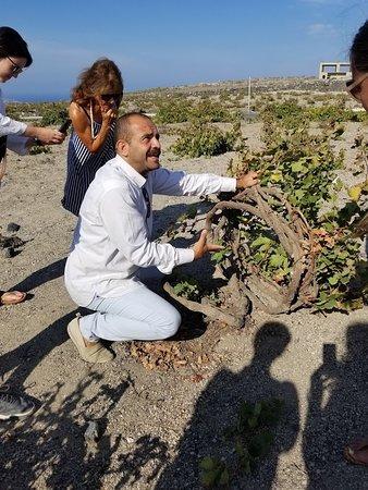 Santorini Wine Adventure: Stephanos talking about the history