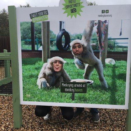 Monkey Haven: photo1.jpg