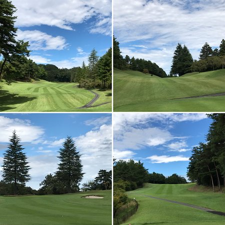 Musashi Mori Country Club