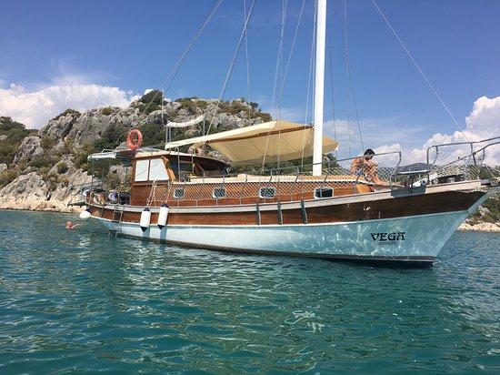 Vega Boat Tours