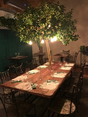 Clorofilla, Rome - Regola - Restaurant Reviews, Photos