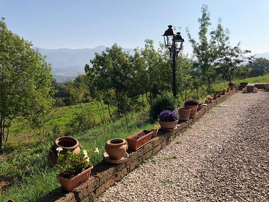 Sant'Andrea del Garigliano, Italia: Particolare