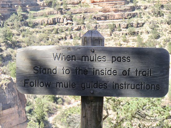 Canyon View Information Center: hiking in Grand Canyon