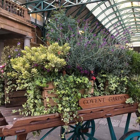 Covent Garden: photo1.jpg