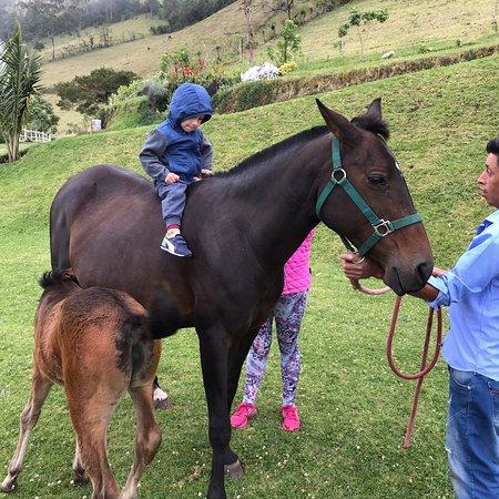 Nono, Ecuador: photo1.jpg
