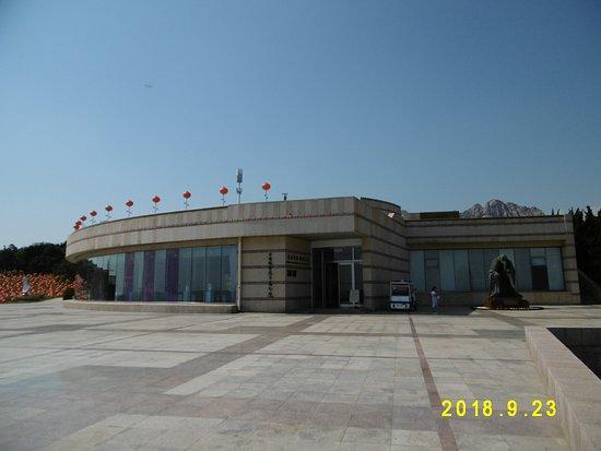 QingDao DiaoSu YiShuGuan