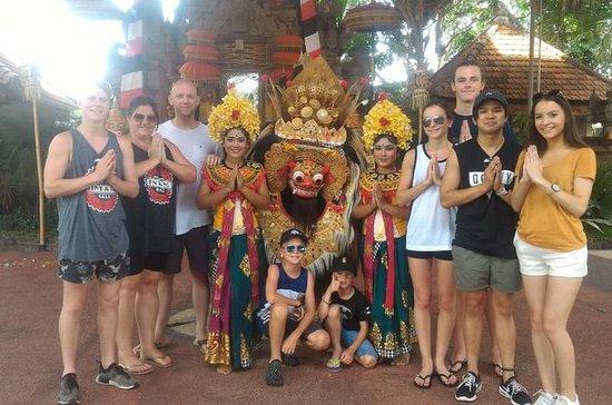 Visite de la terrasse de riz d'Ubud