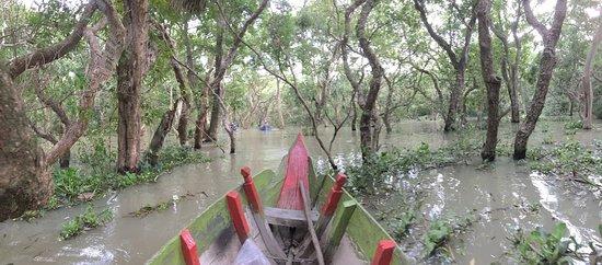 Kompong Phluk: 小舟からの景色。猿もみました。