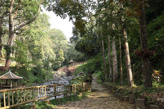 Banyuwangi, Indonesien: 20180923072517_IMG_4462_large.jpg