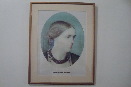 Seychelles Natural History Museum: Marianne North