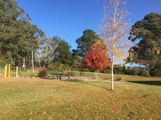 Erica, Australien: Autumn has hit