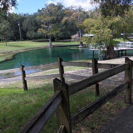 Bell, Флорида: photo0.jpg