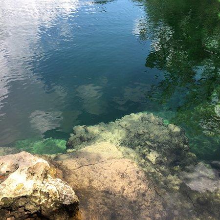 Mayo, فلوريدا: photo1.jpg