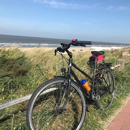 Holland Bike Tours (Haarlem) - 2019 All You Need to Know