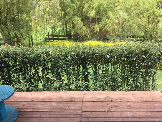 Iza, Colombia: Terraza
