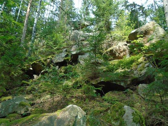 Карпаты, Украина: Горные валуны в лесах Карпат. украина.