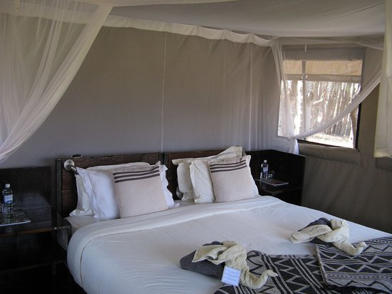Moremi Game Reserve, Botswana: Our tent 2