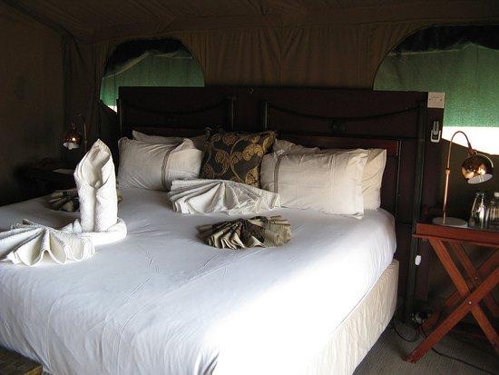 Camp Savuti: Our tent 1