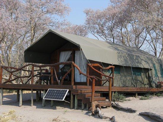 Camp Savuti: Our tent 2