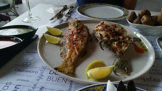 Restaurante Aristides: IMG_20180920_202851_large.jpg
