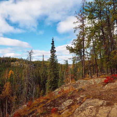 Cameron River Falls Trail: photo1.jpg
