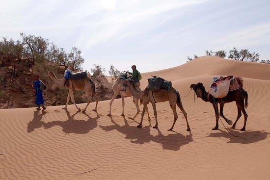 M'Hamid, Morocco: nos fidèles porteurs